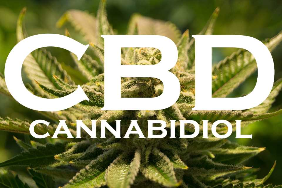 CBD Cannabidiol - Best CBD Oil