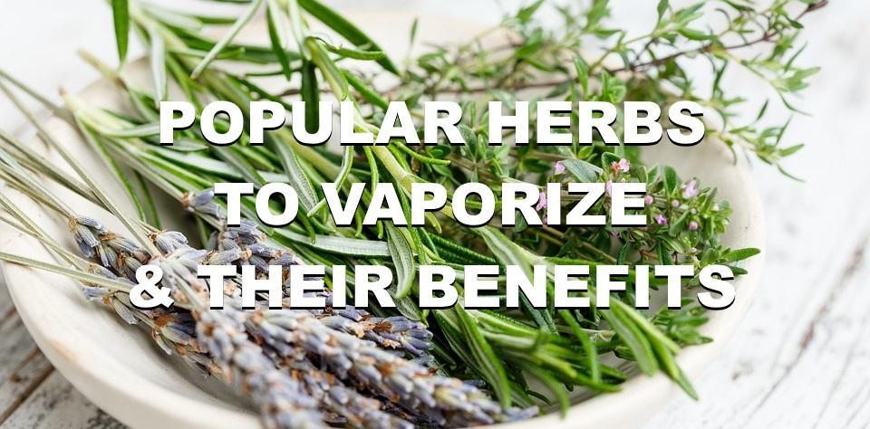Popular Herbs to Vaporize