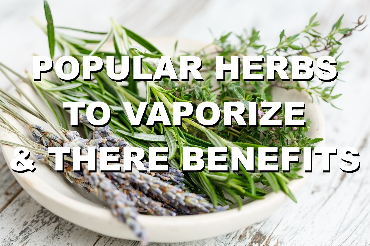 What herbs can you vape - legal herbs vaporizer