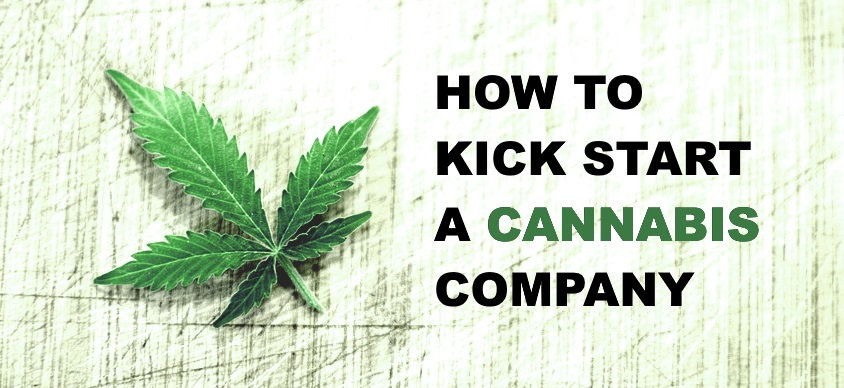 How to Kick Start a Cannabis Company