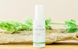 CBD Relief & Recovery Spray by Sagely Naturals