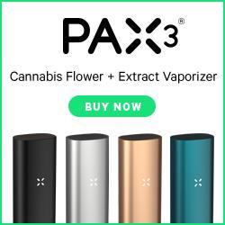best pax vaporizer